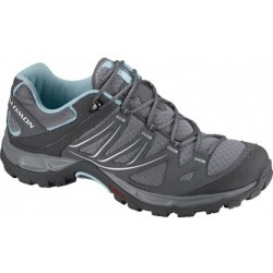Salomon Ellipse Aero W pewter/detroit 308932